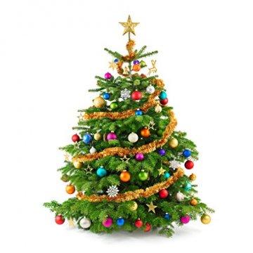 COOLWEST 24-teilig Weihnachtskugel-Set Weihnachtskugeln Christbaumkugeln Weihnachtsbaumschmuck Baumkugeln (Mehrfarbig) MEHRWEG - 6