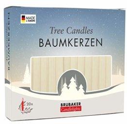Brubaker 20er Pack Baumkerzen Wachs Weihnachtskerzen Pyramidenkerzen Christbaumkerzen Champagner - 1
