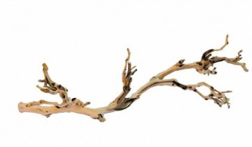 Exo Terra Reptile Forest Branch Large-Large - 1