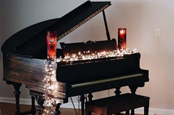 gresonic-Led-Cluster-20m lang-Lichterkette-Strombetrieb Deko für Innen Außen Garten Weihnachtsbaum Hochzeit (Warmweiss Dauerlicht, 1000LED) - 5