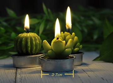 LA BELLEFÉE Kerzen Kaktus Teelicht Kerzen Sukkulenten Kerzen rauchfreie Kerzen für Home Dekoration und Weihnachten Geschenke - 6er Set - 4