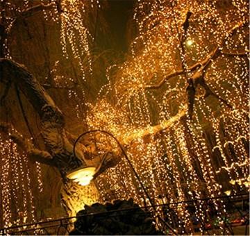 LED Lichtervorhang, LED Lichterkette, 216 LED 5M Eisregen/Eiszapfen Lichterkette, LED String Licht, Lichterkettenvorhang, Weihnachtsbeleuchtung, Weihnachtsdeko Christmas INNEN und AUSSEN, Warmweiß - 6