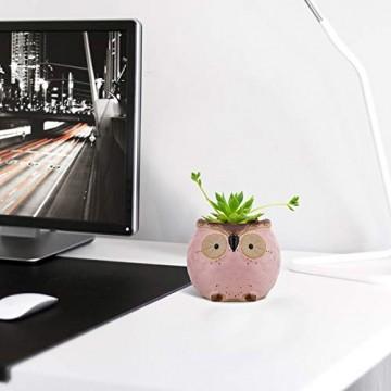 Lewondr Keramik Sukkulenten Töpfe, 6 Stücke 7cm Kaktus Pflanze Töpfe Mini Blumentöpfe Set mit Eulenmuster, Dekorationen für Zuhause, Büro, Balkon - Eule 03 - 3
