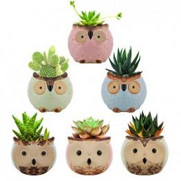 Lewondr Keramik Sukkulenten Töpfe, 6 Stücke 7cm Kaktus Pflanze Töpfe Mini Blumentöpfe Set mit Eulenmuster, Dekorationen für Zuhause, Büro, Balkon - Eule 03 - 1