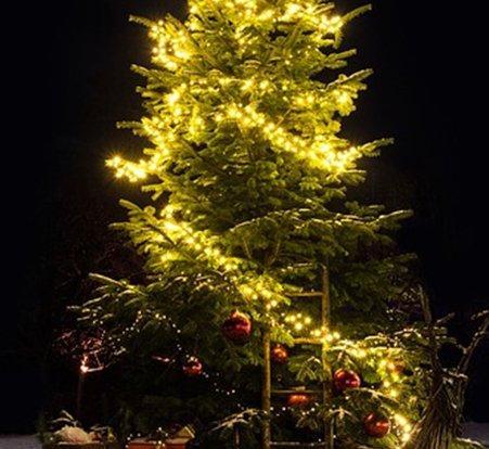 lichterketteweihnachtsbaum