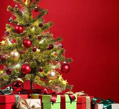 miniweihnachtsbaum