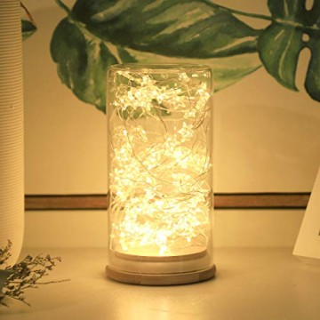SALCAR 10m 100er LED Lichterkette Stern Kupfer USB-Schnittstelle, Wasserdicht LED Draht Micro Weihnachtsbeleuchtung für Innen- und Außenbereich - 5