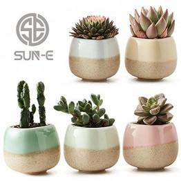 SUN-E 5 in Set 5.6 cm Gefäß Übertopf Keramik Fließlasur 5-Farben-Basisserie Set Sukkulenten Topf Kaktus Blumentopf Perfekte Geschenkidee - 1