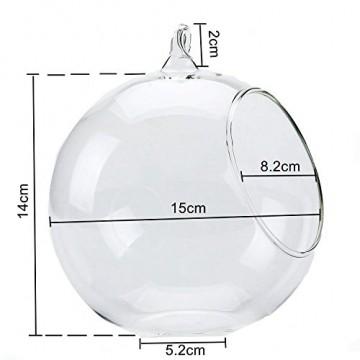 T4U 15cm Glasvase zum Anfhängen 2er-Set, Hängende Glaskugeln Pflanzgefäße für Sukkulenten und Kakteen, Luftpflanzen Halter Teelichthalter… - 3