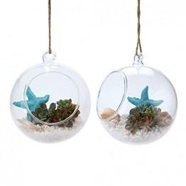 T4U 15cm Glasvase zum Anfhängen 2er-Set, Hängende Glaskugeln Pflanzgefäße für Sukkulenten und Kakteen, Luftpflanzen Halter Teelichthalter… - 1
