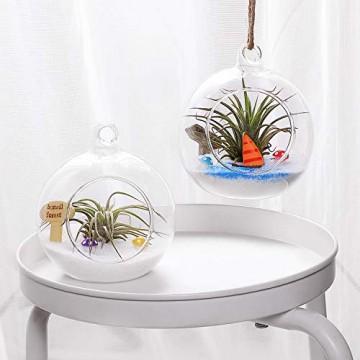 T4U 15cm Glasvase zum Anfhängen 2er-Set, Hängende Glaskugeln Pflanzgefäße für Sukkulenten und Kakteen, Luftpflanzen Halter Teelichthalter… - 6
