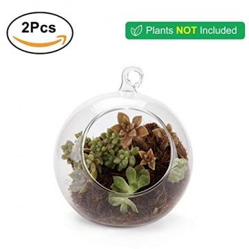 T4U 15cm Glasvase zum Anfhängen 2er-Set, Hängende Glaskugeln Pflanzgefäße für Sukkulenten und Kakteen, Luftpflanzen Halter Teelichthalter… - 7