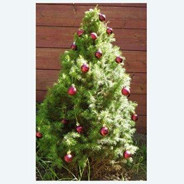 kleine Minni Dekokugeln Weihnachten Weihnachtskugeln Kugeln matt glänzend glitzernd 24 Stück 3,3cm weinrot rot dunkelrot Bordeaux - 7