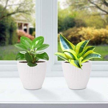 15,2 cm Kunststoff-Blumentöpfe für den Innenbereich, Set von 5 modernen dekorativen Gartenbehältern für Sukkulenten, Blumen, Kräuter, Kaktus, Haus und Büro Dekor Modern 01-weiß - 5