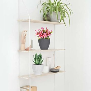 15,2 cm Kunststoff-Blumentöpfe für den Innenbereich, Set von 5 modernen dekorativen Gartenbehältern für Sukkulenten, Blumen, Kräuter, Kaktus, Haus und Büro Dekor Modern 01-weiß - 6