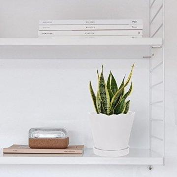 Chive Schnittlauch, großer Tika-Suchkulenten und Kaktus-Blumentopf, Keramik, Blumen- und Pflanzgefäß, mit Drainageloch und Abnehmbarer Untertasse, ideal für drinnen und draußen Modern Large weiß - 2