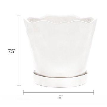 Chive Schnittlauch, großer Tika-Suchkulenten und Kaktus-Blumentopf, Keramik, Blumen- und Pflanzgefäß, mit Drainageloch und Abnehmbarer Untertasse, ideal für drinnen und draußen Modern Large weiß - 3