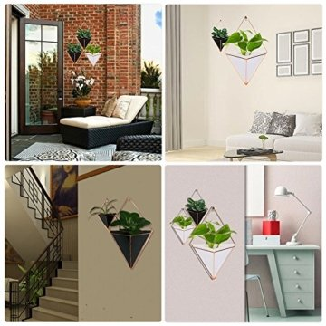 gaeruite Blumentopf Wand Pflanztopf, Wand-hängend Pflanze Halterung Halter Blumenampel Pflanzgefäß für Sukkulenten/Kaktus Wanddeko (L, Black) - 3