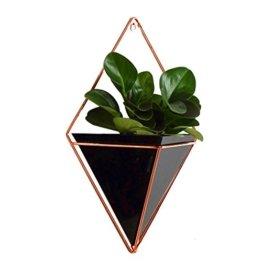 gaeruite Blumentopf Wand Pflanztopf, Wand-hängend Pflanze Halterung Halter Blumenampel Pflanzgefäß für Sukkulenten/Kaktus Wanddeko (L, Black) - 1
