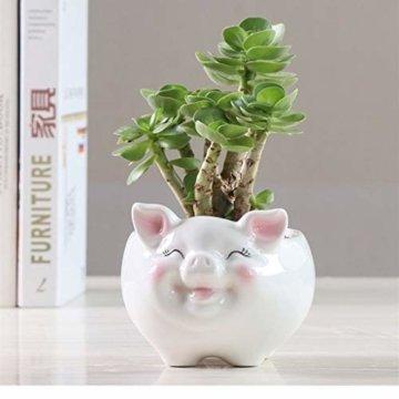 Gemseek Süßer Tier-geformter Sukkulenten-Übertopf mit Drainage-Tablett, Kaktus-/Blumen-Container, Bonsai-Halter für den Innenbereich s schwein - 7