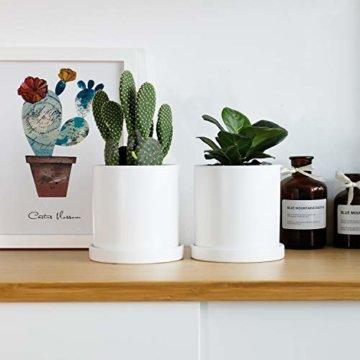Greenaholics Blumentöpfe – 10,9 cm Keramik matte Oberfläche Zylinder-Keramik Pflanzgefäße für Sukkulenten, Kaktus, Blumen, mit Drainageloch und Tablett, matt weiß - 2