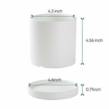 Greenaholics Blumentöpfe – 10,9 cm Keramik matte Oberfläche Zylinder-Keramik Pflanzgefäße für Sukkulenten, Kaktus, Blumen, mit Drainageloch und Tablett, matt weiß - 4