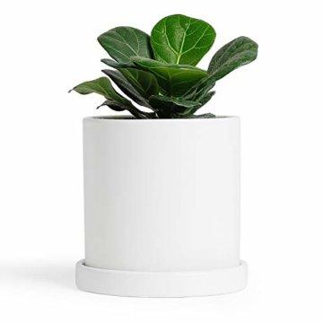 Greenaholics Blumentöpfe – 10,9 cm Keramik matte Oberfläche Zylinder-Keramik Pflanzgefäße für Sukkulenten, Kaktus, Blumen, mit Drainageloch und Tablett, matt weiß - 1