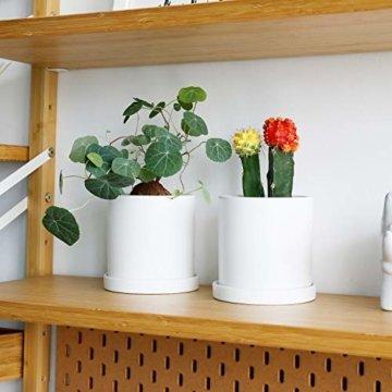 Greenaholics Blumentöpfe – 10,9 cm Keramik matte Oberfläche Zylinder-Keramik Pflanzgefäße für Sukkulenten, Kaktus, Blumen, mit Drainageloch und Tablett, matt weiß - 5
