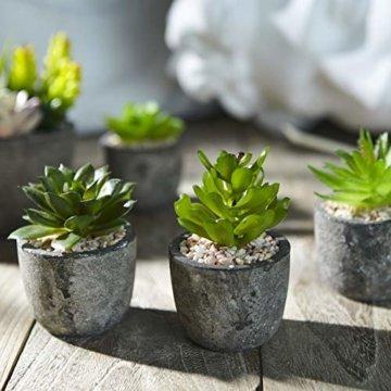 Jobary Set mit 5 künstlichen Sukkulenten mit Töpfen (einschließlich 10 Pflanzen), Bunten und Dekorativen Fälschung Sukkulentenmit Steinen, ideal für Zuhause, Büro und Dekor im Freien - 2