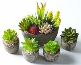 Jobary Set mit 5 künstlichen Sukkulenten mit Töpfen (einschließlich 10 Pflanzen), Bunten und Dekorativen Fälschung Sukkulentenmit Steinen, ideal für Zuhause, Büro und Dekor im Freien - 1
