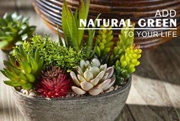 Jobary Set mit 5 künstlichen Sukkulenten mit Töpfen (einschließlich 10 Pflanzen), Bunten und Dekorativen Fälschung Sukkulentenmit Steinen, ideal für Zuhause, Büro und Dekor im Freien - 4