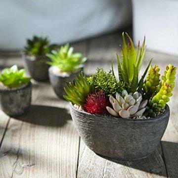 Jobary Set mit 5 künstlichen Sukkulenten mit Töpfen (einschließlich 10 Pflanzen), Bunten und Dekorativen Fälschung Sukkulentenmit Steinen, ideal für Zuhause, Büro und Dekor im Freien - 6