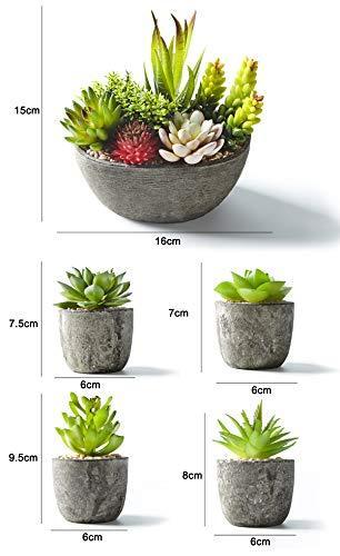 Jobary Set mit 5 künstlichen Sukkulenten mit Töpfen (einschließlich 10 Pflanzen), Bunten und Dekorativen Fälschung Sukkulentenmit Steinen, ideal für Zuhause, Büro und Dekor im Freien - 7