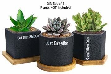 Sukkulenten-Übertopf, Kaktus-Topf, 7 cm, für Sukkulenten, Kräuter, Mini-Blumen, Pflanzen, Bambus-Tablett, 3er-Set - 1