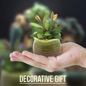 Sukkulentententöpfe 6 Stück – Mini Keramiktöpfe 6,4 cm, kleine Blume, Pflanzgefäß, Bonsai, Kaktus-Topf mit Loch – perfekte dekorative Geschenkidee - 3
