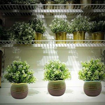 Sukkulentententöpfe 6 Stück – Mini Keramiktöpfe 6,4 cm, kleine Blume, Pflanzgefäß, Bonsai, Kaktus-Topf mit Loch – perfekte dekorative Geschenkidee - 4