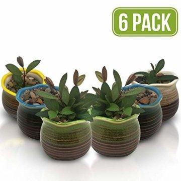 Sukkulentententöpfe 6 Stück – Mini Keramiktöpfe 6,4 cm, kleine Blume, Pflanzgefäß, Bonsai, Kaktus-Topf mit Loch – perfekte dekorative Geschenkidee - 1