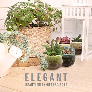 Sukkulentententöpfe 6 Stück – Mini Keramiktöpfe 6,4 cm, kleine Blume, Pflanzgefäß, Bonsai, Kaktus-Topf mit Loch – perfekte dekorative Geschenkidee - 5