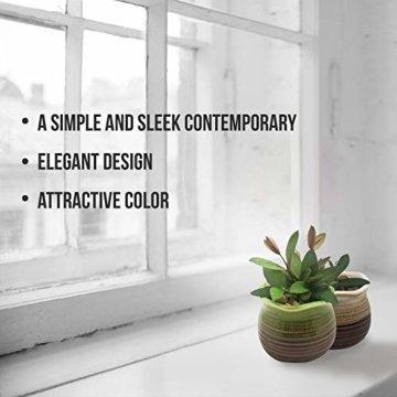 Sukkulentententöpfe 6 Stück – Mini Keramiktöpfe 6,4 cm, kleine Blume, Pflanzgefäß, Bonsai, Kaktus-Topf mit Loch – perfekte dekorative Geschenkidee - 6