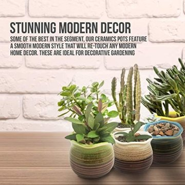 Sukkulentententöpfe 6 Stück – Mini Keramiktöpfe 6,4 cm, kleine Blume, Pflanzgefäß, Bonsai, Kaktus-Topf mit Loch – perfekte dekorative Geschenkidee - 7