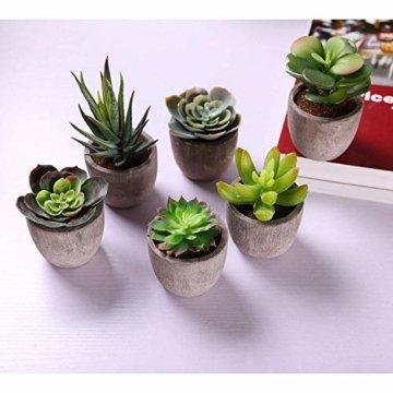 T4U 6er Set Mini Künstliche Sukkulenten Dekorative Kunstpflanze Bonsai mit Topf - Sammlung 1 - 3