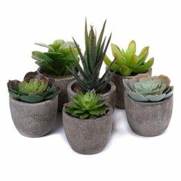T4U 6er Set Mini Künstliche Sukkulenten Dekorative Kunstpflanze Bonsai mit Topf - Sammlung 1 - 1