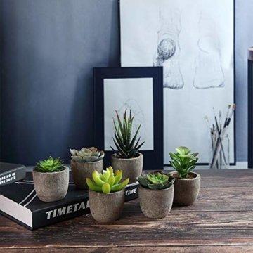T4U 6er Set Mini Künstliche Sukkulenten Dekorative Kunstpflanze Bonsai mit Topf - Sammlung 1 - 4