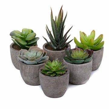 T4U 6er Set Mini Künstliche Sukkulenten Dekorative Kunstpflanze Bonsai mit Topf - Sammlung 1 - 5