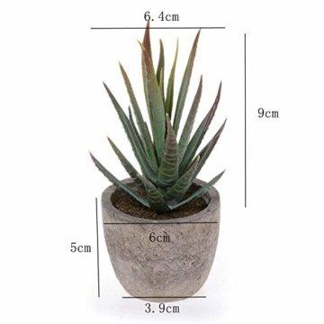 T4U 6er Set Mini Künstliche Sukkulenten Dekorative Kunstpflanze Bonsai mit Topf - Sammlung 1 - 7