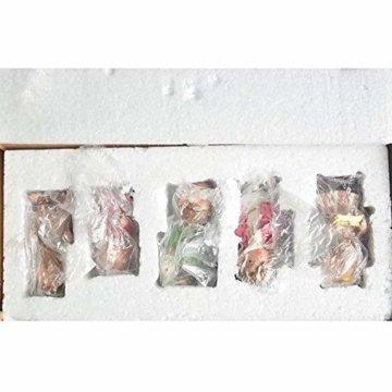 DXQDXQ Statue Mini Weihnachtskrippe Krippenfiguren 9 Figuren Holz Tischdeko Weihnachtsdeko Krippe Figuren Wasserdicht - 8