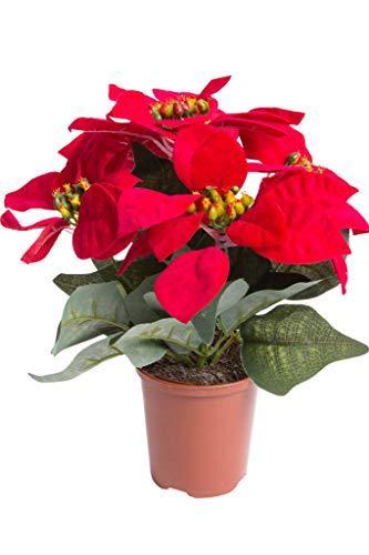 Flora-Seta GmbH künstliche Poinsettie (Weihnachtsstern) mit 5 samtigen Blüten in braunem Kunststofftopf Farbe: rot - 1