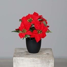 mucplants Künstlicher Weihnachtsstern Poinsettie Rot 29cm im schwarzen Kunststofftopf Kunstpflanze Dekopflanze - 1