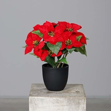 mucplants Künstlicher Weihnachtsstern Poinsettie Rot 37cm im schwarzen Kunststofftopf Kunstpflanze Dekopflanze - 1