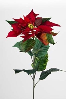 Seidenblumen Roß 12 Stück Weihnachtsstern Natura 72cm samt-rot PM Kunstblumen künstliche Blumen Poinsettie - 1